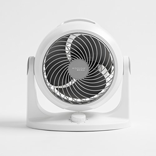 Buy fan for small room