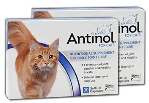 Cat Joint Health Supplement - Antinol Merial Joint Health Supplement for Cats Soft Gel Caps, (2 Pack (30 Count))
