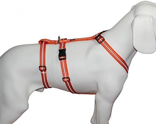 No Exit Ausbruchsicheres Hundegeschirr Für Angsthund Sicherheitsgeschirr Für Pflegehunde Reflexband Orange Bauchumfang 60 80 Cm 25 Mm Bandbreite Haustier