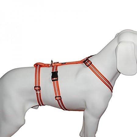 7 Gr/ö/ßen 100 /% ausbruchsicher f/ür Angsthunde Sicherheitsgeschirr f/ür Pflegehunde Das Original Reflexband Panikgeschirr NoExit Hundegeschirr /®