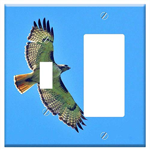 1-Toggle 1-Rocker/GFCI Combination Wall Plate Cover - Red Tailed Hawk Flying Bird Flight Raptor Wil