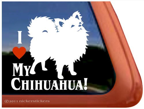 Chihuahua Vinyl Window Decal Sticker