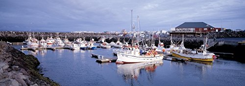 Fishing boats in a marina, Keflavik, Iceland 30x40 photo reprint by PickYourImage
