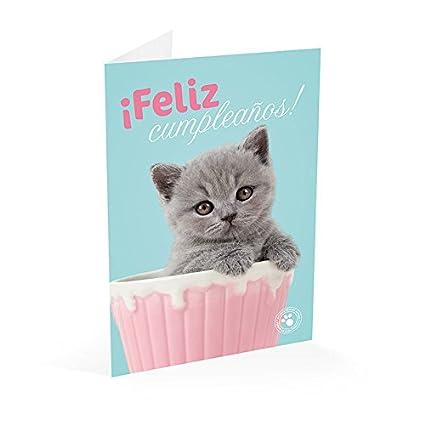 Grupo Erik Editores Tarjeta Felicitacion Studio Pets Gato Feliz Cumpleaños