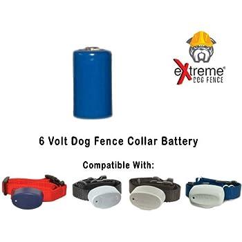 Amazon Com Four Pack Perimeter Pet Fencing Dog Collar