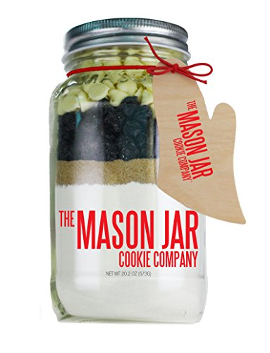 The Mason Jar Cookie Company Blueberries & Cream Scone Mix, 20.2 Ounce