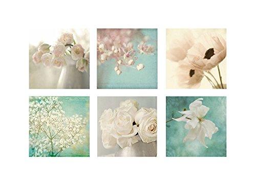 Set of Six Flower Prints Photographs, Poppy, Rose, Tulip, Magnolia Aqua Tulip Garden