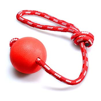 Dog Toys,Indestructible Rubber Ball on a Rope,for K9 Training and Teeth Cleaning,Chew Toys,Interactive Toy for Large Small Dogs,Medium Size,Red