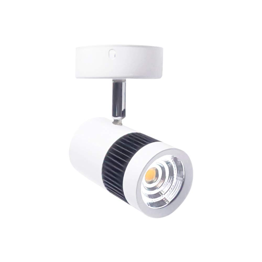 BA-BOLING Wall Mounted LED Picture Accent Ceiling Spotlight,2.3'' Diameter,Warm Light, 10W Spot Lamp with LED Driver for Clothing Store Hotel Exhibition Hall Mall Home,1 Pack