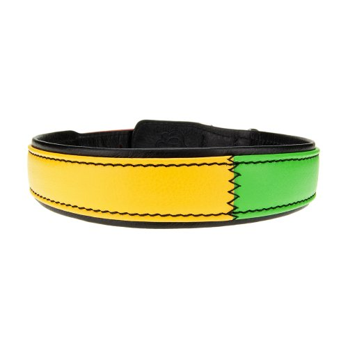 Bitch and Stud Chic Italian Leather Dog Collar, Size 5, Reggae