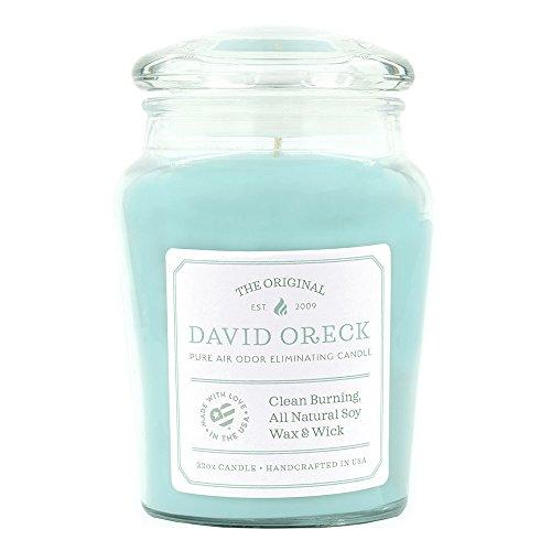 22oz Original Clean Burning Odor Eliminating Candle, 120 Hour Burn Time, Ocean (Odor Eliminating Soy Candle)