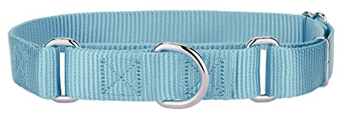 10 - Country Brook Martingale Heavyduty Nylon Dog Collar - Baby Blue - Small