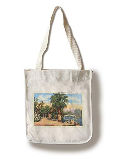 Lantern Press Echo Park in Midwinter - Los Angeles, California, 1950 (100% Cotton Tote Bag - Reusable)