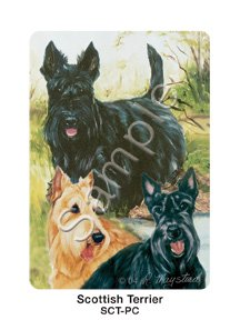 Cards, by Ruth Maystead - Scottish Terrier ()