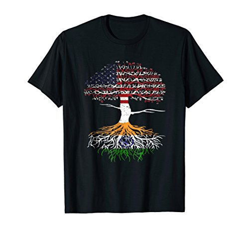 American Heart Indian Roots Patriot USA India Flag Tee ()