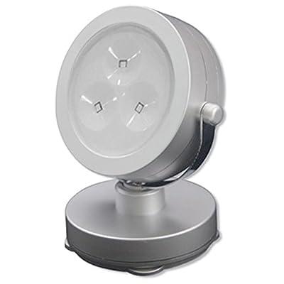 Rite Lite 6 LED Spot Light