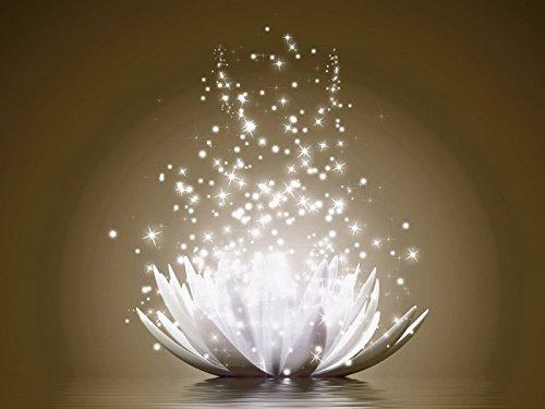 Artland Qualitätsbilder I Bild auf Leinwand Leinwandbilder Vadim Georgiev Magie der Lotus-Blume braun Botanik Blumen Seerose Digitale Kunst Braun A7KS