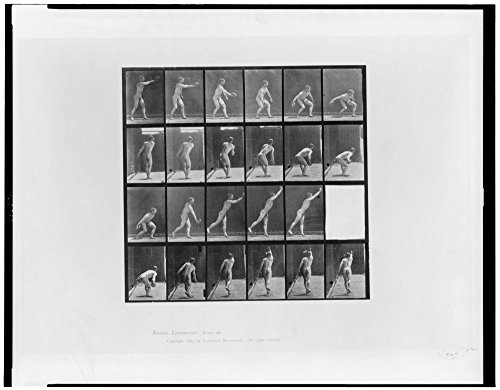 1887 Photo Animal locomotion Twenty-three consecutive images of nude man throwing discus.