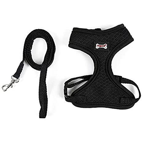 Pet Supplies : HBK2 Pet Cat Harness Collars Breakaway Vest and Leash ...