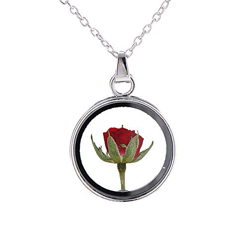 MIXIA Little Prince Red Rose Specimen Pendant Necklaces Dried Flowers Plant Specimen Round Glass Cameo Rose Necklace for Women (Silver)