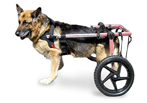 Walkin' Wheels Dog Wheelchair - for Large Dogs 70-180 lbs -...