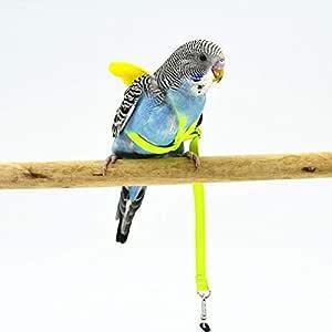 Parrot Traction Strap - Arnés para mascotas y pajareras (ajustable ...