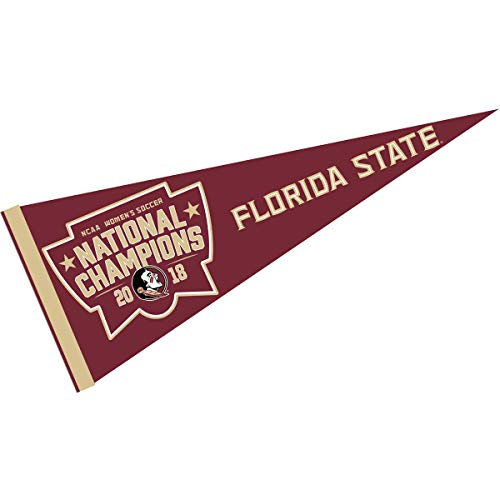 (College Flags and Banners Co. Florida State Seminoles 2018 Womens Soccer Champions Pennant)