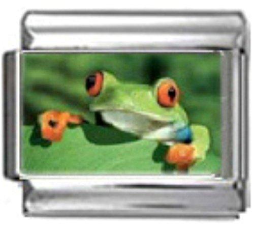 Frog Italian Charm Bracelet - Stylysh Charms Frog Green Amphibian Photo Italian 9mm Link AN039