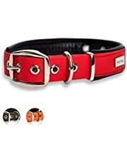 PetTec Dog Collar Made of Trioflex™ with Padding, Weatherproof, Water Resistant, Robust