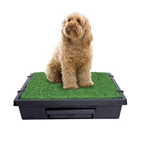 PetSafe Pet Loo Portable Dog Potty, Alternative to Pee Pads, Medium by PetSafe