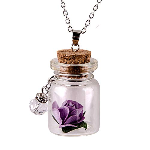 - Swyss Wishing Bottle Pendant Necklace Glow in The Dark Flower Glass Tiny Pendant Chain for Women Creative Fashion Gift