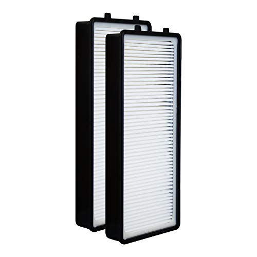 (True HEPA Replacement Filter Compatible with HoMedics TotalClean at-OFL Filter for AT-PET01 AT-PET02 AR-45, 2 Pack)