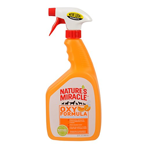 Feces Stain Removal (Nature's Miracle Stain & Odor Remover, Orange Oxy, Trigger Spray, 32oz (P-5749))