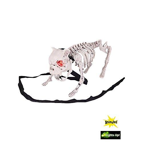 Barking Dog Skeleton Halloween Prop
