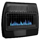 Dyna-Glo 30,000 BTU Blue Flame Thermostatic