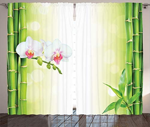 Ambesonne Spa Curtain