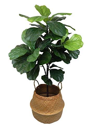 Ella and Lulu Dessign Fiddle Leaf Seagrass Basket Tree One Size ()