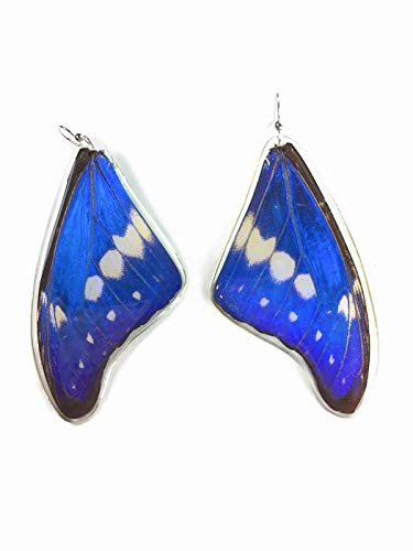Butterfly earrings and her blue top