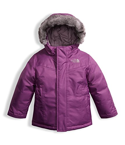 The North Face Toddler Girls Greenland Down Parka Wood Violet (5 Toddler) by The North Face