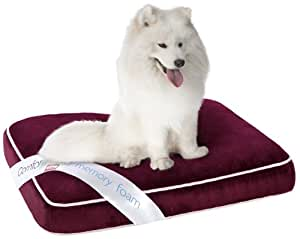 Simmons Comforpedic Orthopedic Napper Memory Foam Pet Bed, 27 by 36 by 4-Inch, Red
