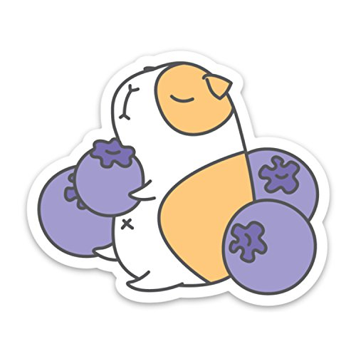 Pigs Food (Blue Berries and Guinea Pig Laptop Sticker)