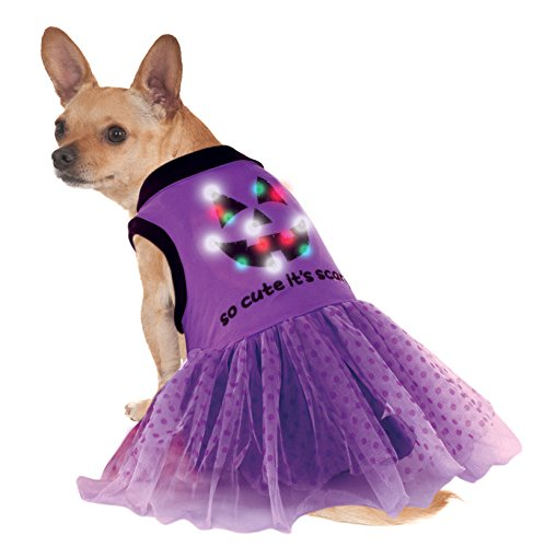 Rubie's LED Light-Up Halloween Dog Costume Dress (Maltese Halloween Costumes)