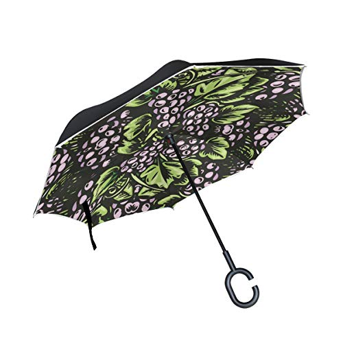 MALPLENA Grapes Painting Auto Open Inverted Umbrellas with C-Shaped Handle Waterproof Double Layer Folding