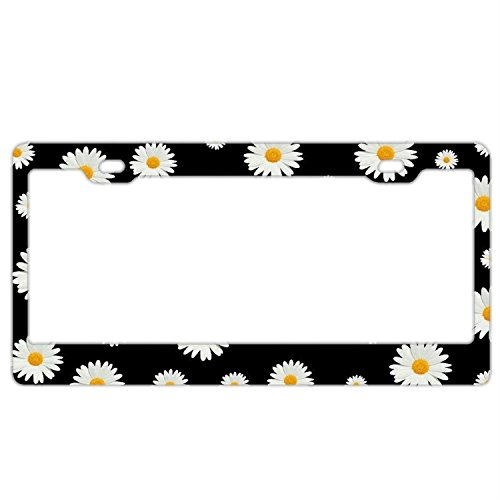 - Customized Personalized Stainless Steel License Plate Frame Holder, Decorative License Plate Frame White Daisy Black Background
