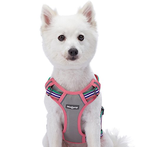 rs Soft & Comfy 3M Reflective Multi-Colored Stripe Padded Dog Harness Vest, Chest Girth 22