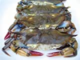 Soft Shell BLUE CRAB (2 DOZEN)