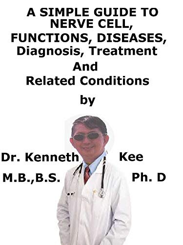 A  Simple  Guide  To  Nerve Cell, Functions, Diseases, Diagnosis, Treatment  And  Related Conditions (Function Of Dendrites)