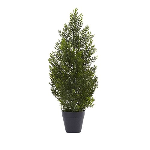 Nearly Natural 2ft Mini Cedar Pine Tree (Indoor/Outdoor)