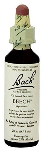Bach Flower Beech