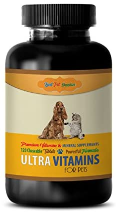BEST PET SUPPLIES LLC Dog Immune System Supplements – Powerful Ultra Vitamins – for Dogs and Cats Health – Advanced Complex Formula – Vitamin c for Dogs Pills – 120 Chews 1 Bottle